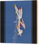 Model Plane 9 Wood Print