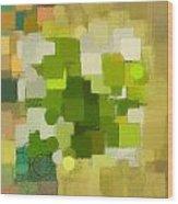 Modern Abstract Xxxv Wood Print