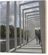 Modern Archway - Schwerin Garden -  Germany Wood Print