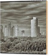 Modern Buenos Aires Black And White Wood Print