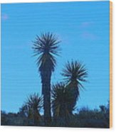 Mohave Blue Wood Print