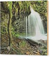 Mohawk Falls At Ricketts Glen Wood Print