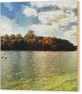 Mohegan Lake 3 Wood Print