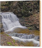 Mohican Falls In Spring Wood Print