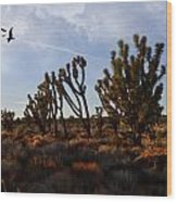 Mojave Desert Joshua Tree With Ravens Wood Print