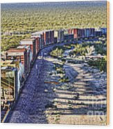 Mojave Desert Train By Diana Sainz Wood Print