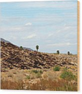 Mojave Desert Landscape Wood Print