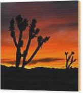 Mojave Morning Wood Print