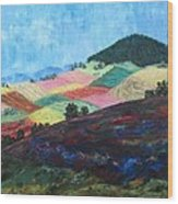 Mole Hill Patchwork - Sold Wood Print
