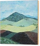 Mole Hill - Sold Wood Print by Judith Espinoza
