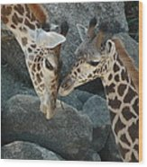 Mom And Baby Giraffe Wood Print