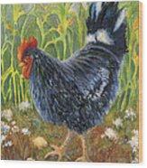 Mom And Chicks Wood Print