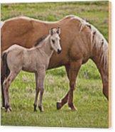 Mom And Foal 2 Wood Print