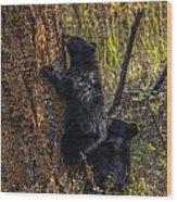 Mom Said Up The Tree Wood Print