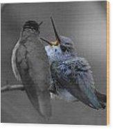 Momma Hummingbird Feeding Baby Wood Print by Old Pueblo Photography