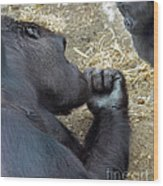 Mommy Are You Asleep Wood Print