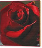 Mom's Red Rose Happy Birthday Wife Wood Print
