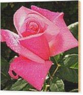 Moms Rose Wood Print by Kip Krause