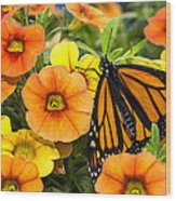Monarch Among The Flowers Wood Print