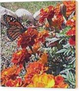 Monarch Among The Marigolds Wood Print