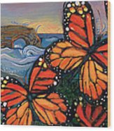 Monarch Butterflies At Natural Bridges Wood Print by Jen Norton