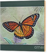 Viceroy Butterfly By George Wood Wood Print