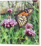 Monarch Butterfly On Pink Lantana Wood Print