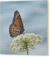 Monarch Butterfly On River Wood Print