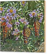 Monarch Butterfly Trio Wood Print