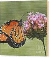 Monarch Flutterby Wood Print