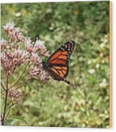 Monarch Of The North Wood Print