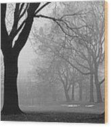 Monarch Park - 321 Wood Print