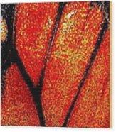 Monarch Wing Wood Print