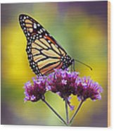 Monarch With Sunflower Wood Print