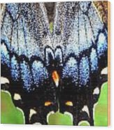 Monarchs Blue Glow Wood Print