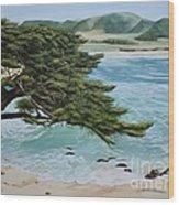 Monastery Beach Wood Print
