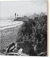 Mondos Shoreline Wood Print