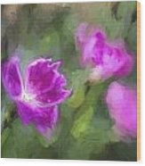 Monet Style Digital Painting Close Up Of Vibrant Pink Kaori Border Plant Wood Print