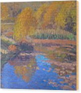 Monets Pond. Whitechapple Wood Print by Terry Perham