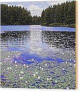 Monet's Prelude Wood Print
