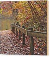 Monet's Trail Wood Print by Debra and Dave Vanderlaan