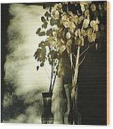 Money Plants Really Do Cast Shadows Wood Print by Guy Ricketts