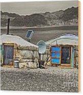 Mongolian Yurts Wood Print