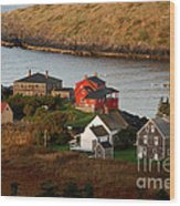 Monhegan Island Maine 142 Wood Print by Cindy McIntyre