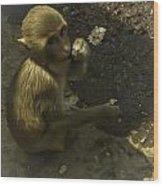Monkey Wood Print by Jennifer Burley