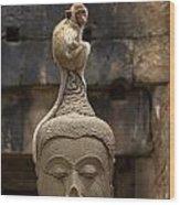 Monkey Sitting Perched On Buddha Head Wood Print