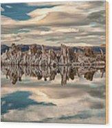 Mono Lake Reflections Wood Print