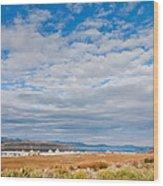 Mono Lake Tufa Formations Wood Print