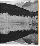 Mono One Mile Lake Wood Print