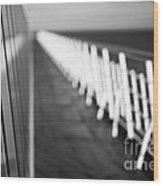 Monochrome Sun Deck Wood Print